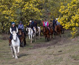 Burnelee Excursions on Horseback - Accommodation Melbourne